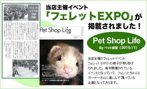 当店主催イベント「フェレットEXPO」が掲載されました!