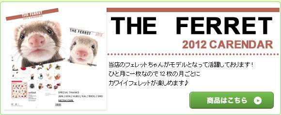 THE FERRET 2012CARENDAR