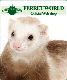 FERRET WORLD�ʥե���åȥ��ɡ�