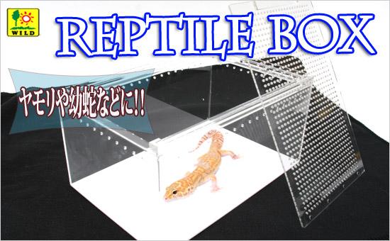 レプタイルボックス