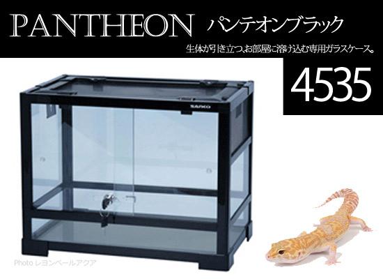 パンテオン4535