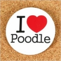I LOVE POODLE 缶バッジ<br>【プードル/雑貨/アクセサリー/グッズ/犬/ドッグ】