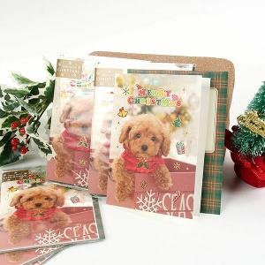 クリスマスフォトカード トイプードルプードル 雑貨 カード グリーティングカード ステーショナリー グッズ 犬 ドッグ
